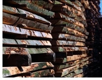 massivholzstapel